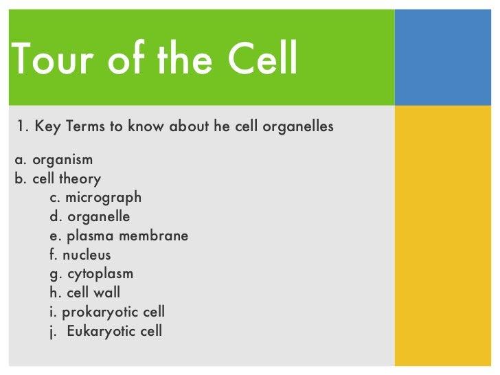 Tour of the Cell 1. Key Terms to know about he cell organelles <ul><ul><li>a. organism </li></ul></ul><ul><ul><li>b. cell ...