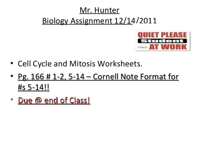 Biology Cell transport and cell cycle 12 06 12 Thursday – Cell Cycle and Mitosis Worksheet Answers