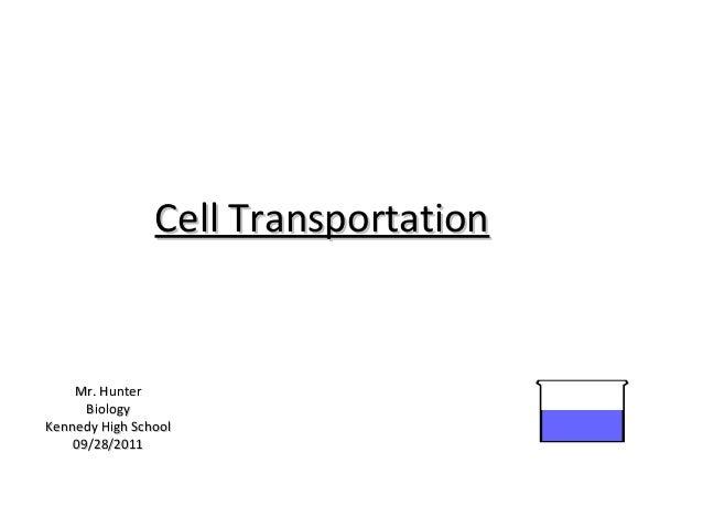 Cell Transportation    Mr. Hunter      BiologyKennedy High School    09/28/2011