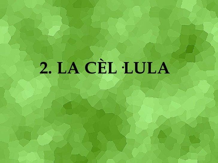 2. LA CÈL·LULA