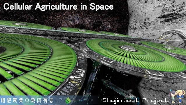 Cellular Agriculture in Space