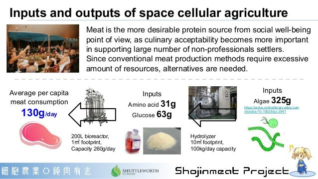 Inputs and outputs of space cellular agriculture Meat is the more desirable protein source from social well-being point of...