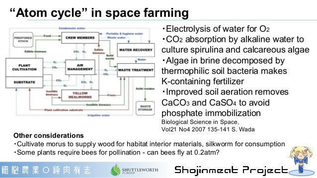 """""""Atom cycle"""" in space farming ・Electrolysis of water for O2 ・CO2 absorption by alkaline water to culture spirulina and cal..."""