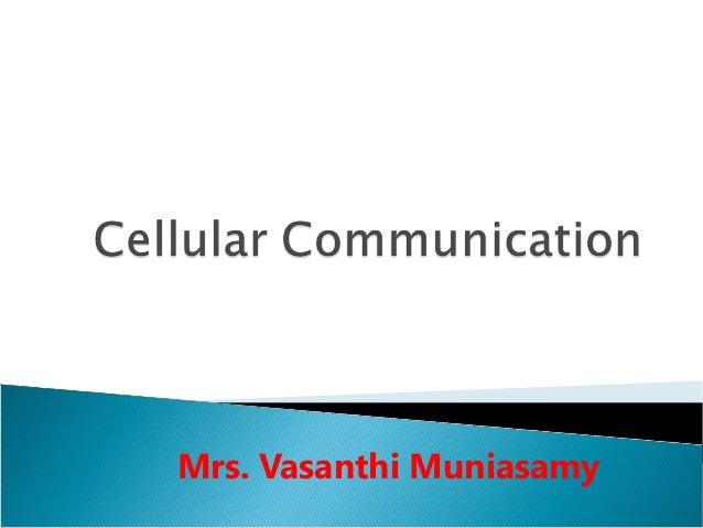 Mrs. Vasanthi Muniasamy