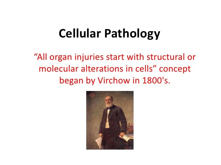 "Cellular Pathology<br />""All organ injuries start with structural or molecular alterations in cells"" concept began by Virc..."