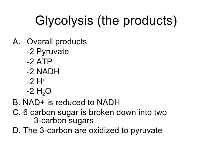 respiration cellular biology glycolysis hl ib overall nadh nad