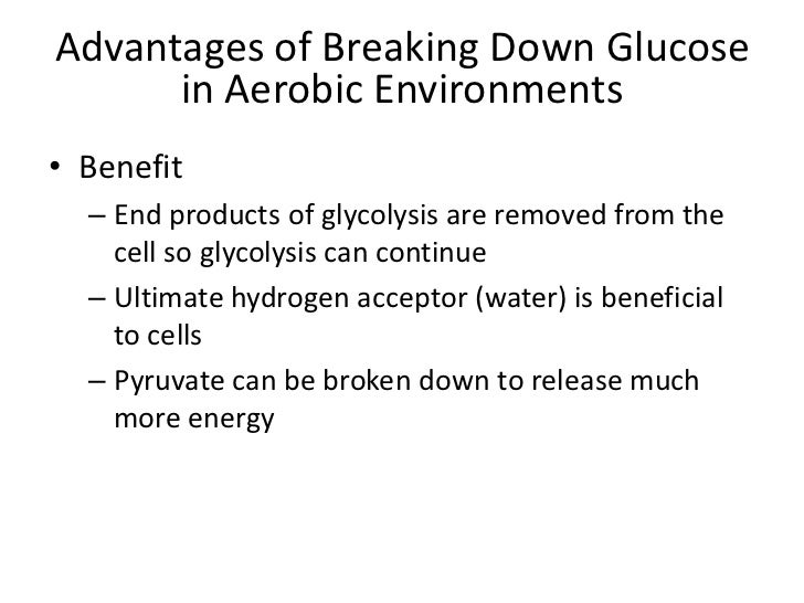 advantages of anaerobic respiration essay The sugar glucose is important because it is necessary for cellular respiration  during cellular respiration, the chemical energy in the glucose molecule is.