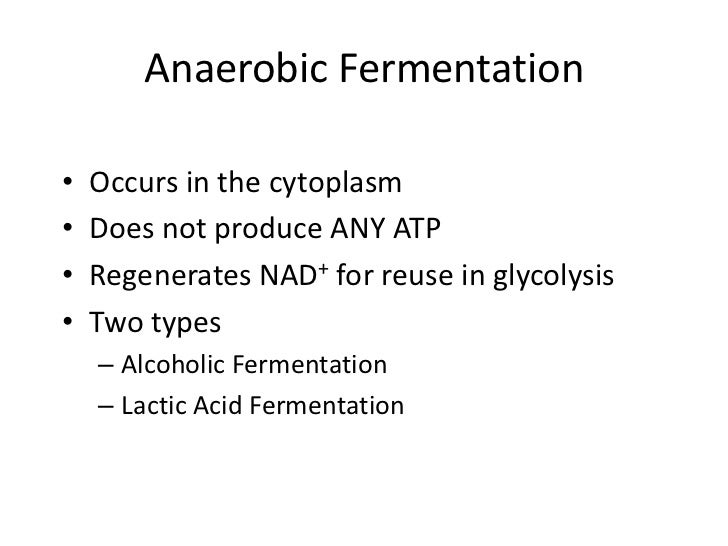 Cellular respiration part 1