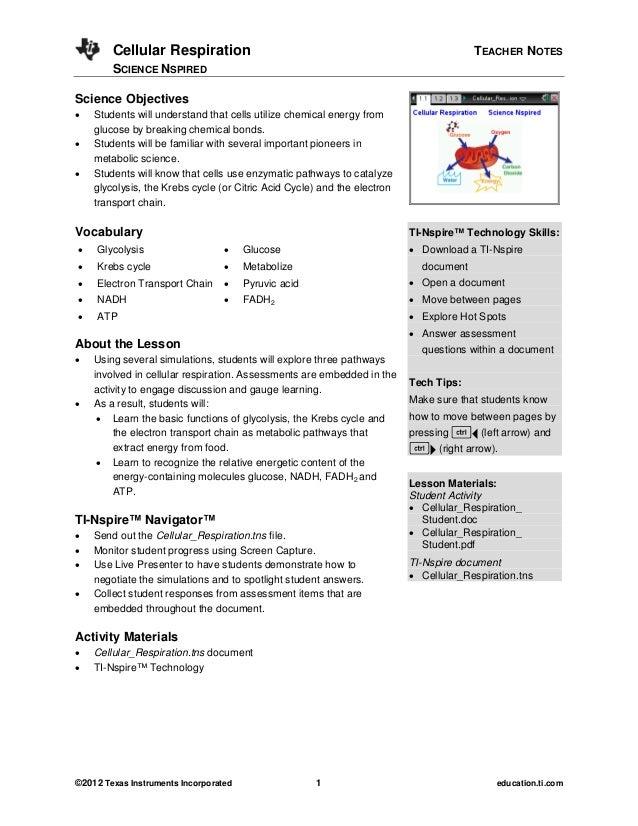Cellular Respiration                                                           TEACHER NOTES        SCIENCE NSPIREDScience...