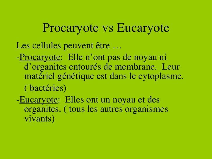 Procaryote vs Eucaryote <ul><li>Les cellules peuvent être … </li></ul><ul><li>- Procaryote :  Elle n'ont pas de noyau ni d...