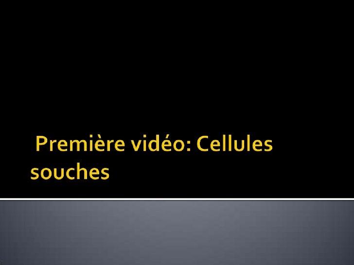 Cellules souches Slide 2