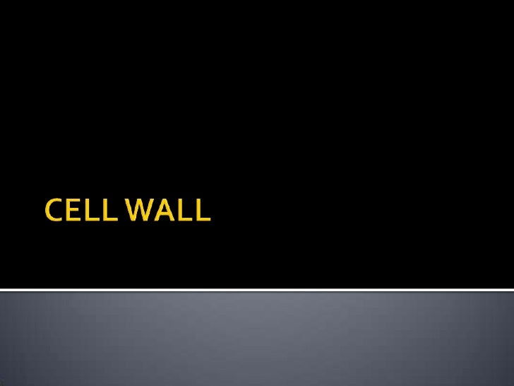 CELL WALL<br />