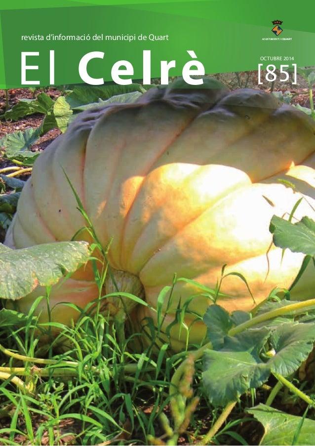 revista d'informació del municipi de Quart  El Celrè AJUNTAMENTDEQUART  OCTUBRE 2014  [85]