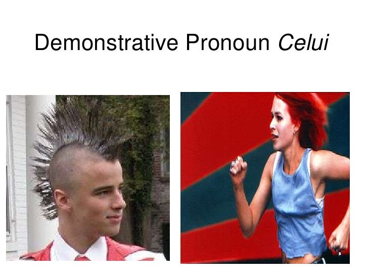 Demonstrative Pronoun Celui