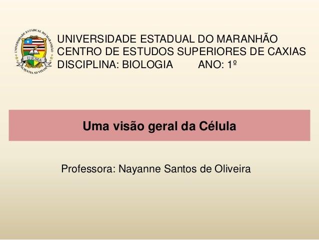 Uma visão geral da Célula UNIVERSIDADE ESTADUAL DO MARANHÃO CENTRO DE ESTUDOS SUPERIORES DE CAXIAS DISCIPLINA: BIOLOGIA AN...