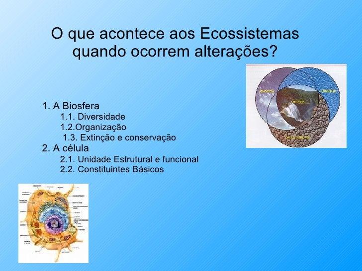 O que acontece aos Ecossistemas quando ocorrem alterações? <ul><li>1. A Biosfera </li></ul><ul><ul><li>1.1. Diversidade  <...