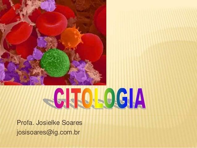 Profa. Josielke Soares josisoares@ig.com.br