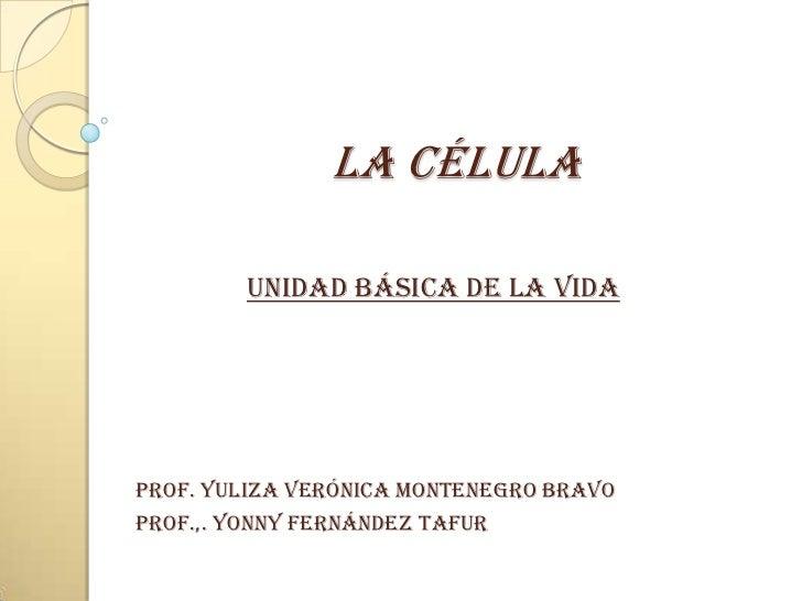LA CÉLULA        UNIDAD BÁSICA DE LA VIDAProf. Yuliza verónica Montenegro bravoProf.,. Yonny Fernández Tafur