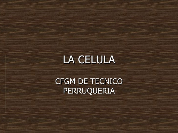 LA CELULACFGM DE TECNICO  PERRUQUERIA