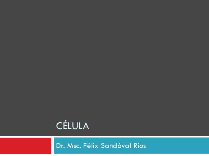 CÉLULA Dr. Msc. Félix Sandóval Ríos