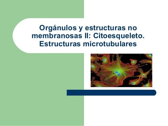 Orgánulos y estructuras nomembranosas II: Citoesqueleto. Estructuras microtubulares