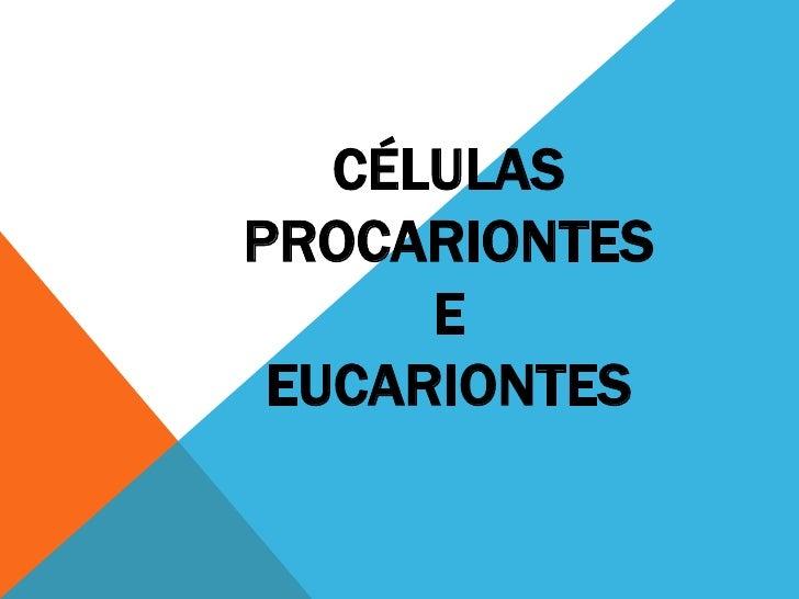 CÉLULASPROCARIONTES      E EUCARIONTES