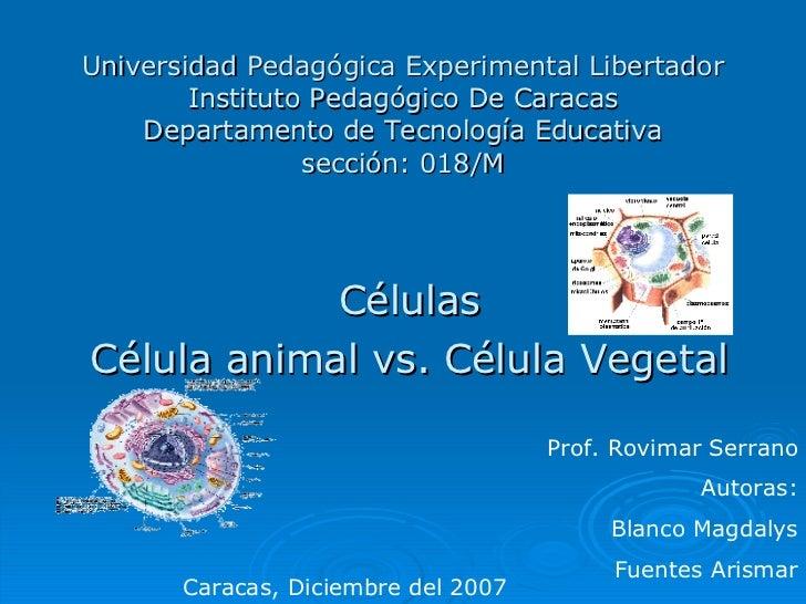 Universidad Pedagógica Experimental Libertador Instituto Pedagógico De Caracas Departamento de Tecnología Educativa secció...
