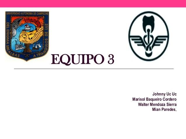 EQUIPO 3 Johnny Uc Uc Marisol Baqueiro Cordero Walter Mendoza Sierra Mian Paredes.