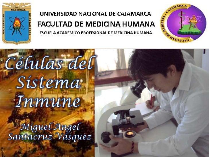 Células del Sistema Inmune<br />Miguel Angel <br />Santacruz Vásquez<br />