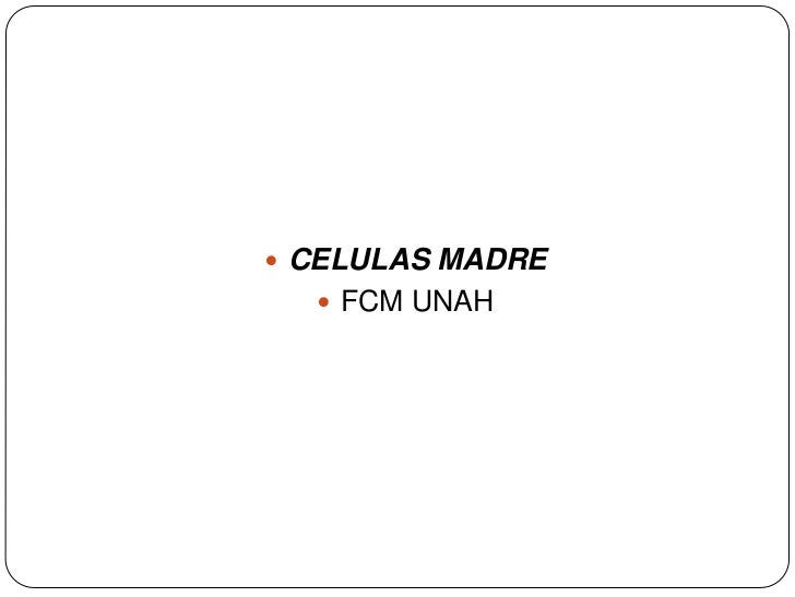 CELULAS MADRE<br />FCM UNAH<br />