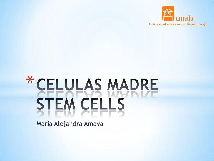 *    Maria Alejandra Amaya