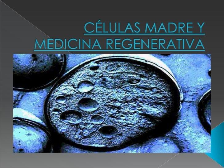 CÉLULAS MADRE Y MEDICINA REGENERATIVA<br />