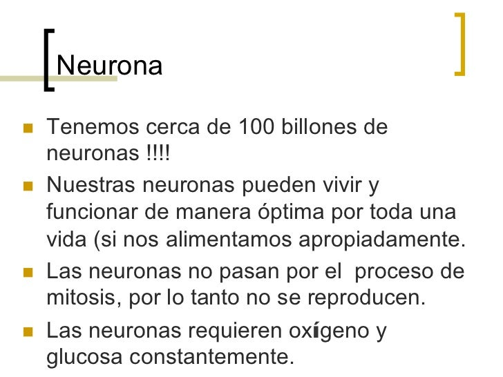 Neuronan   Tenemos cerca de 100 billones de      neuronas !!!!n   Nuestras neuronas pueden vivir y      funcionar de m...