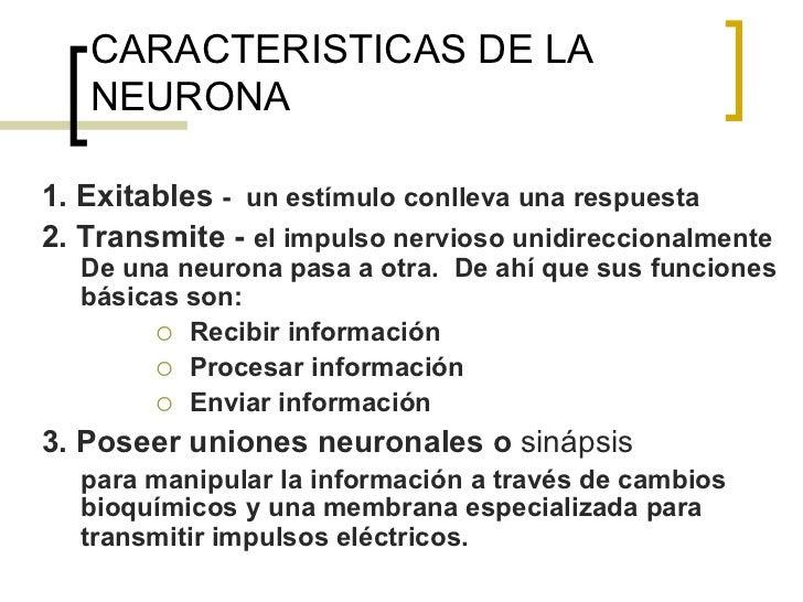 CARACTERISTICAS DE LA   NEURONA1. Exitables - un estímulo conlleva una respuesta2. Transmite - el impulso nervioso unidire...