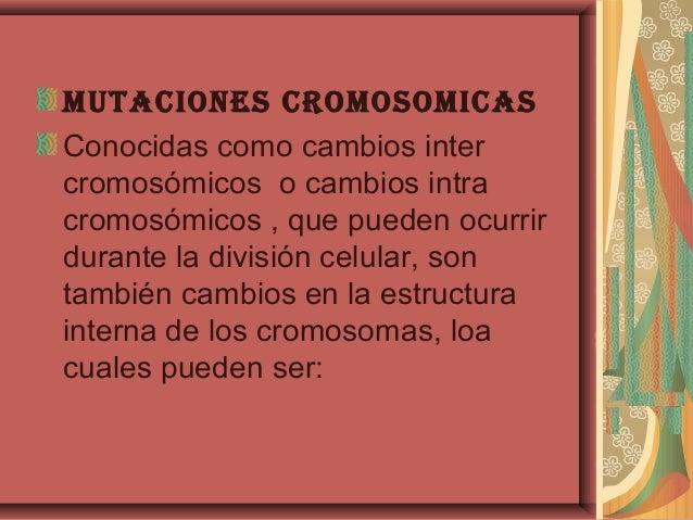 MutAciones croMosoMicAsConocidas como cambios intercromosómicos o cambios intracromosómicos , que pueden ocurrirdurante la...