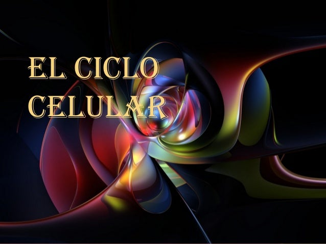El CiCloCElular