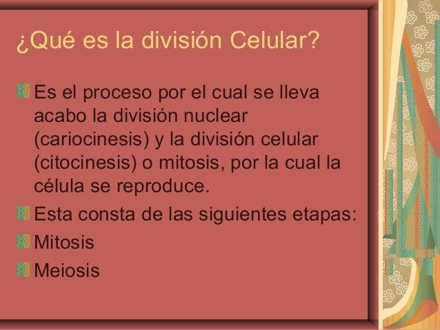 ¿Qué es la división Celular?Es el proceso por el cual se llevaacabo la división nuclear(cariocinesis) y la división celula...