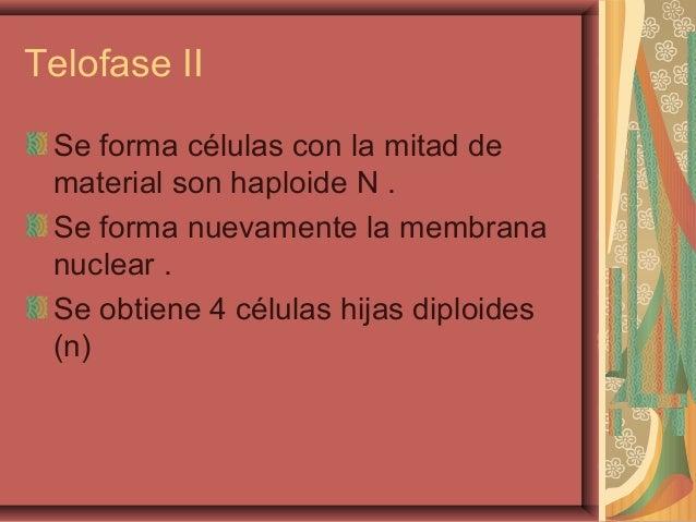 Telofase IISe forma células con la mitad dematerial son haploide N .Se forma nuevamente la membrananuclear .Se obtiene 4 c...