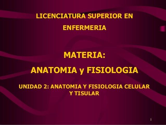 LICENCIATURA SUPERIOR EN             ENFERMERIA             MATERIA:   ANATOMIA y FISIOLOGIAUNIDAD 2: ANATOMIA Y FISIOLOGI...