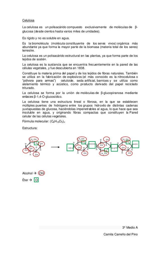 CelulosaLa celulosa es un polisacárido compuesto exclusivamente de moléculas de β-glucosa (desde cientos hasta varios mile...