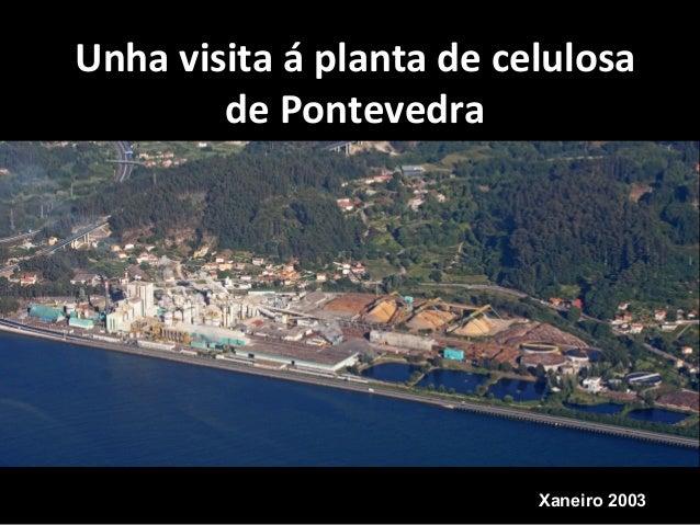 Unha visita á planta de celulosa de Pontevedra Xaneiro 2003