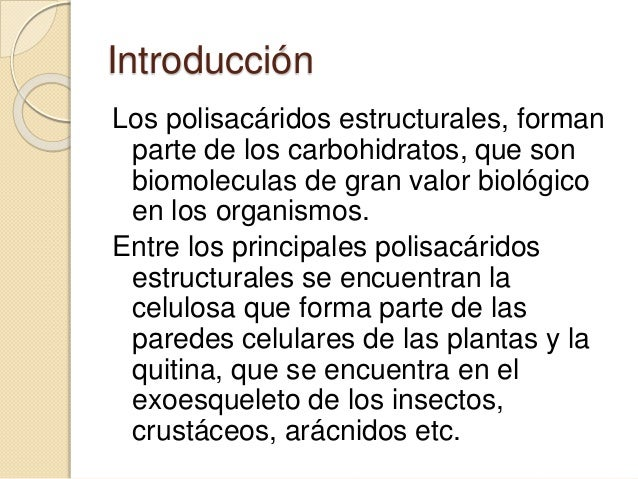 Celulosa expo - Informacion sobre la fibra vegetal ...