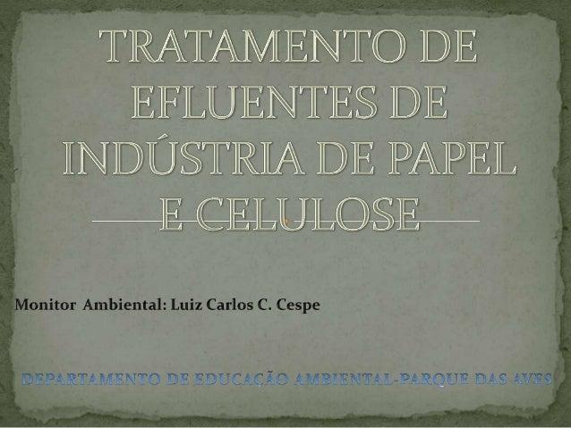 As indústrias de papel e celulose representam hoje uma extrema importância econômica e ambiental, devido à grande disponib...