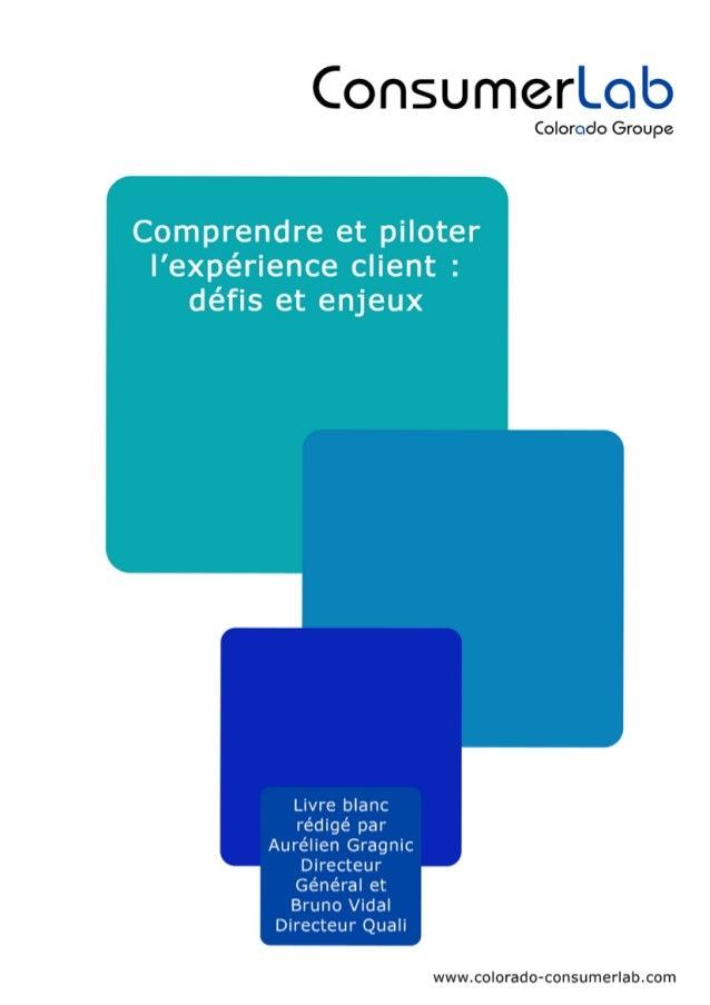 Comprendre et piloter l'expérience client - Consumerlab - Avril 2013