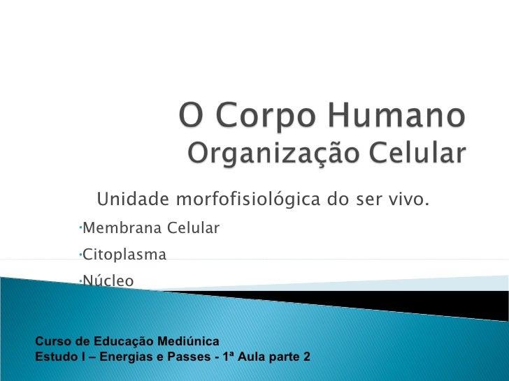 <ul><li>Unidade morfofisiológica do ser vivo. </li></ul><ul><li>Membrana Celular </li></ul><ul><li>Citoplasma </li></ul><u...