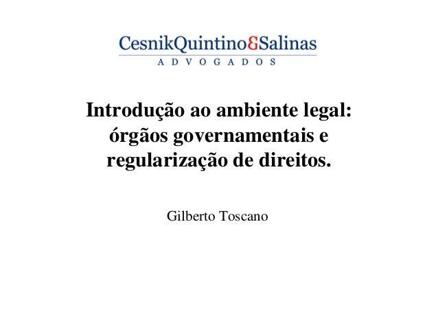 Introdução ao ambiente legal: órgãos governamentais e regularização de direitos. Gilberto Toscano