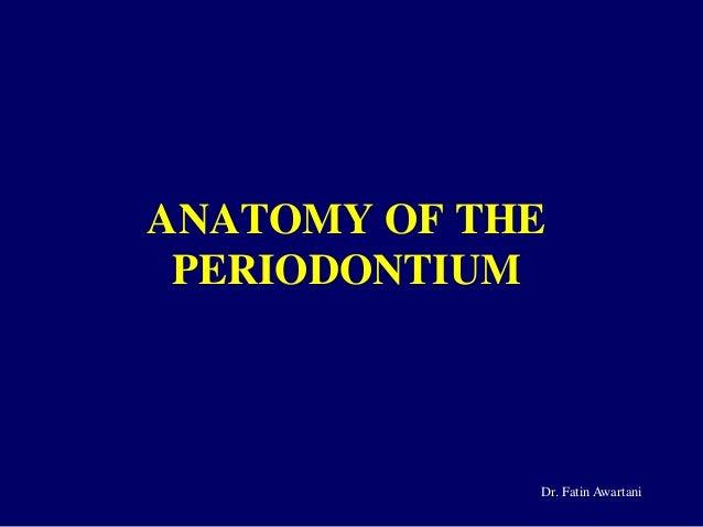 ANATOMY OF THE PERIODONTIUM Dr. Fatin Awartani