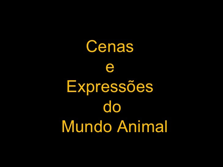 Cenas  e  Expressões  do Mundo Animal