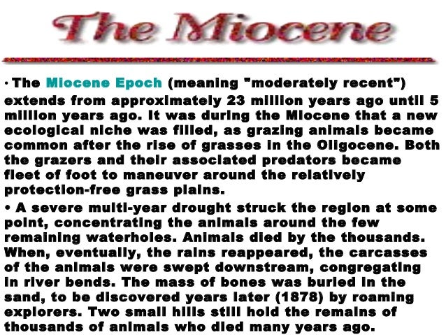 "• The Miocene Epoch (meaning ""moderately recent"") extends from approximately 23 million years ago until 5 million years ag..."