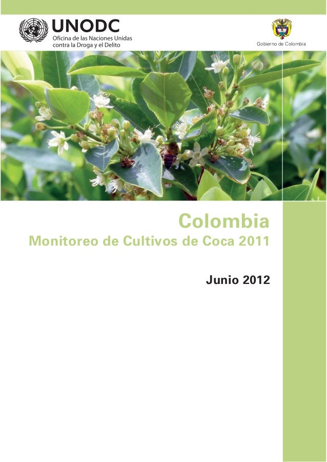 Gobierno de Colombia                     ColombiaMonitoreo de Cultivos de Coca 2011                         Junio 2012